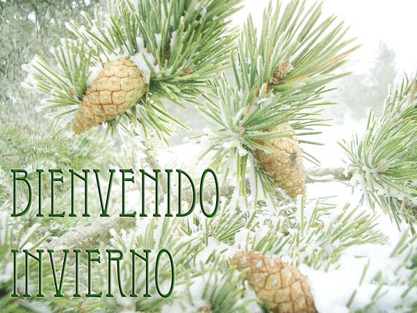 Bienvenido Invierno
