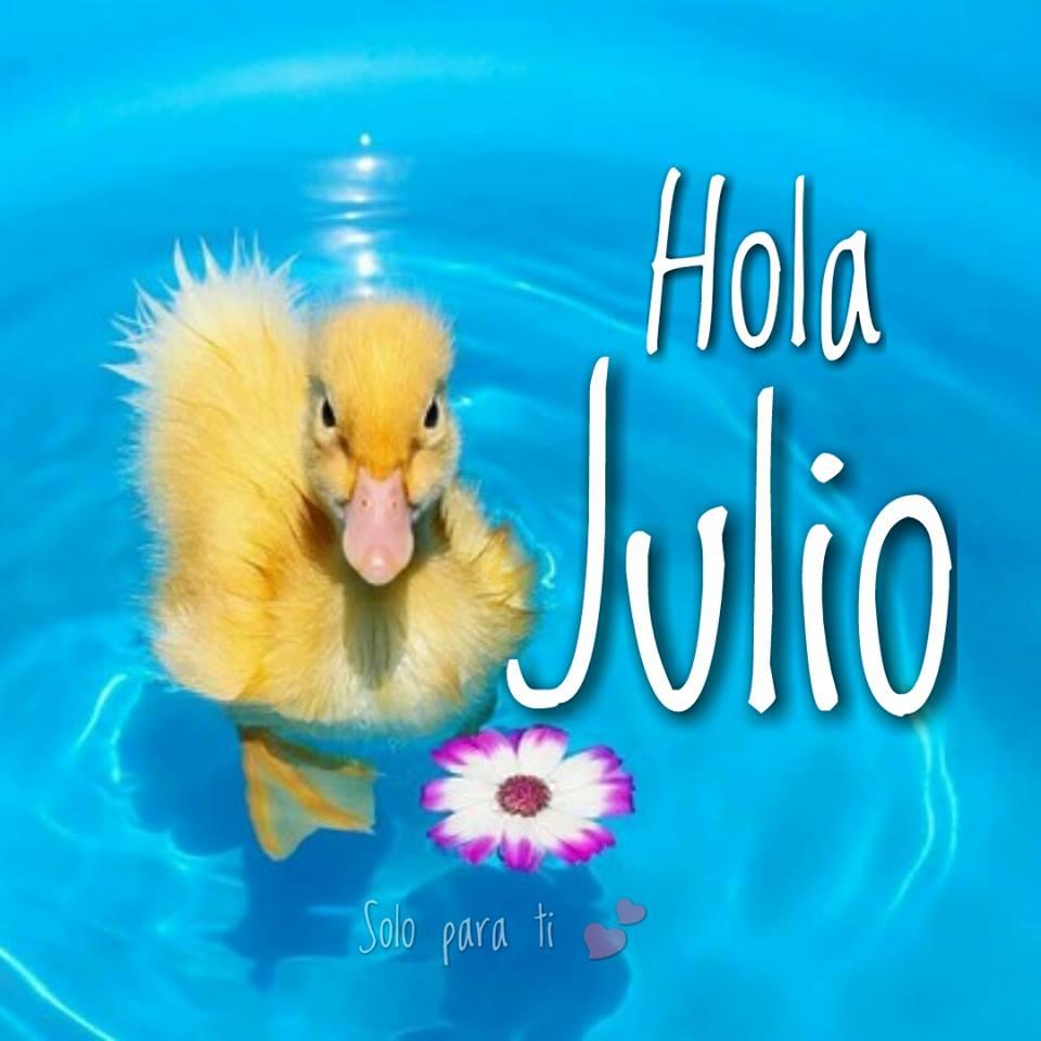 Hola Julio