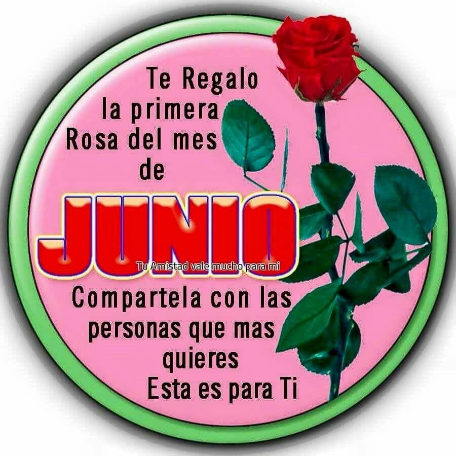 Te regalo la primera rosa del mes de Junio