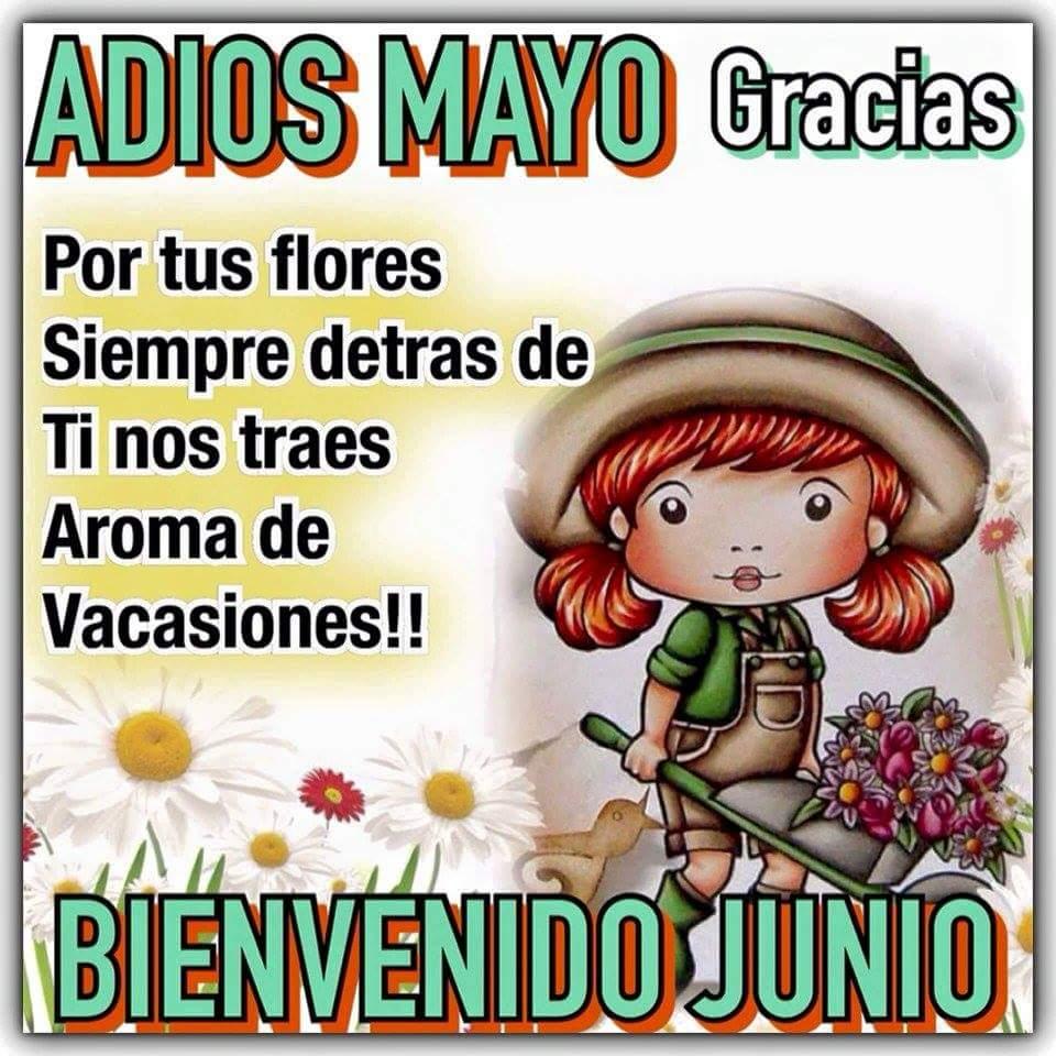 Adiós Mayo, Bienvenido Junio