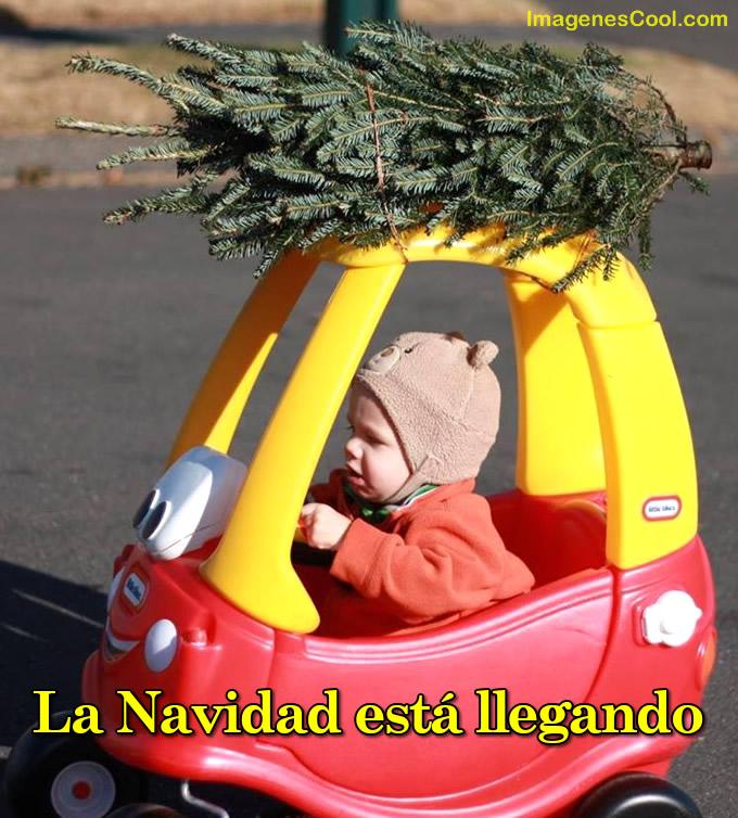 La Navidad está...