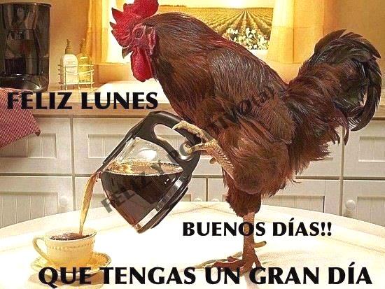 Feliz Lunes, Buenos Días! Que Tengas un Gran Día