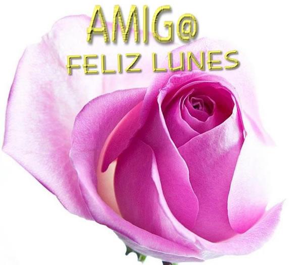 Amig@ Feliz Lunes