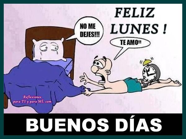 Feliz Lunes! Buenos Días!