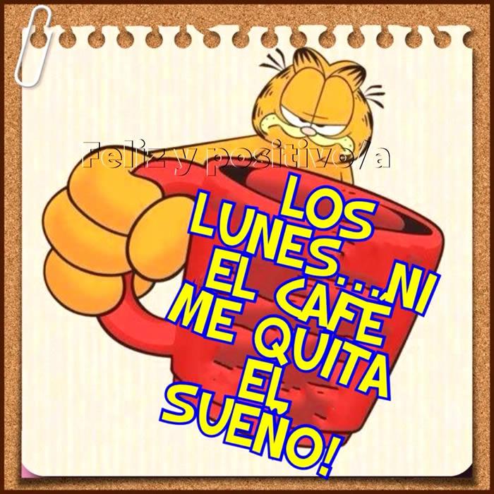 Los Lunes... ni el cafe me quita el sueno!