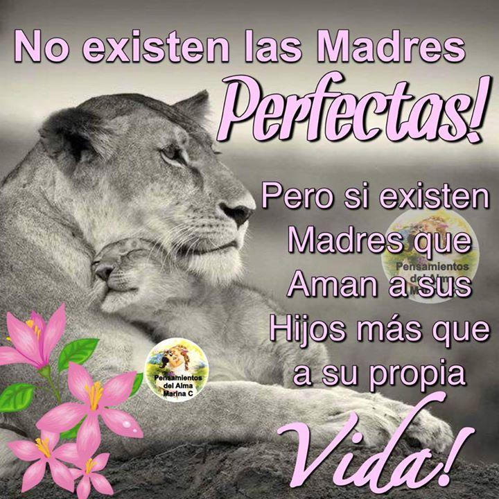 ¡No existen las madres perfectas!