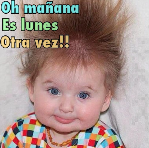 Oh mañana Es Lunes Otra vez!!