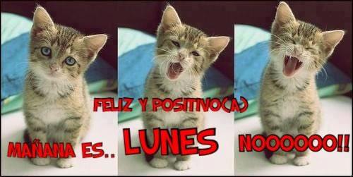 Mañana es... LUNES NOOOOOO!!