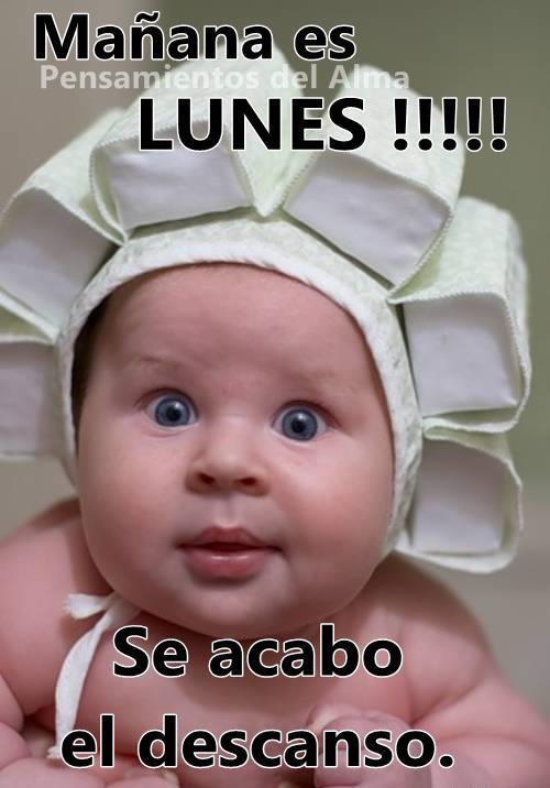 Mañana es LUNES !!!! Se acabo el descanso.