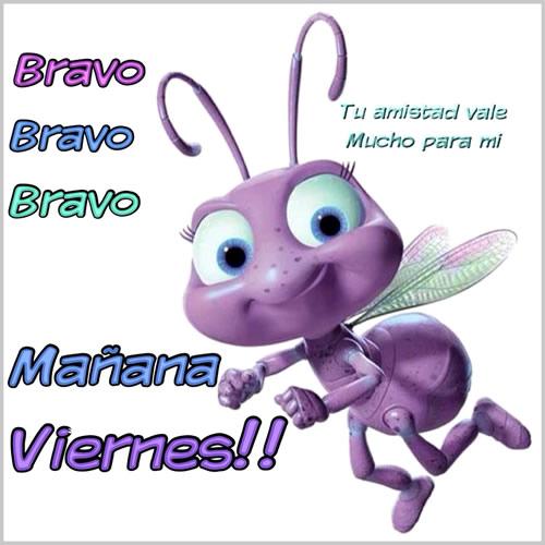 Bravo Bravo Bravo Mañana Viernes!!