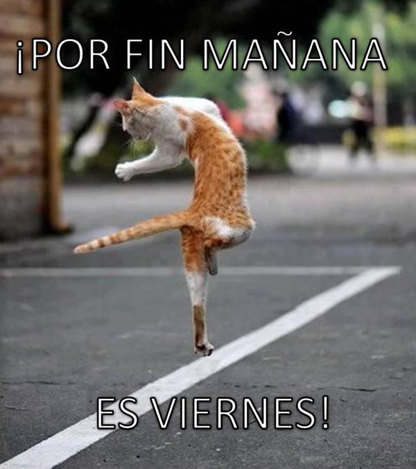 ¡Por Fin Mañana Es Viernes!