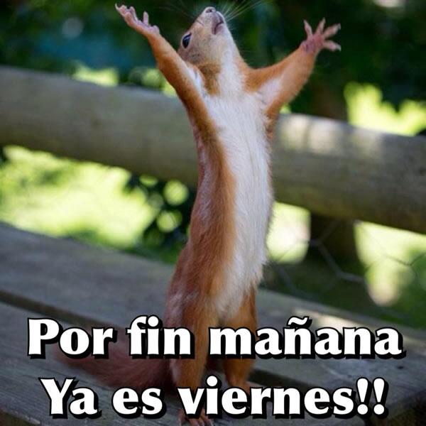 Por fin mañana ya es viernes!!