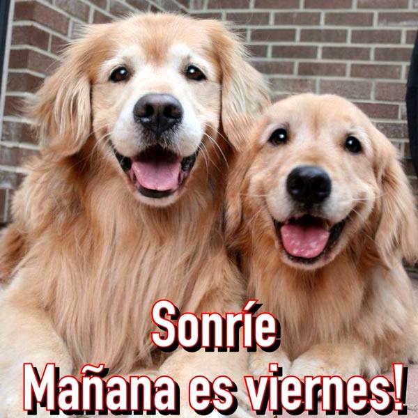 Sonríe, Mañana es viernes!