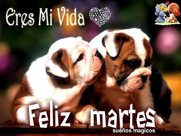 Feliz Martes mi Amor Imagenes Eres mi Vida Feliz Martes
