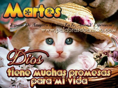 Martes... Dios tiene muchas promesas para mi vida