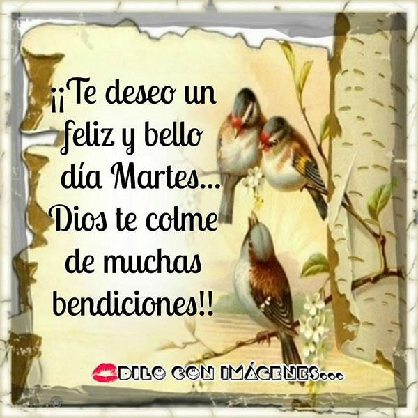 ¡Te deseo un feliz y bello día Martes... Dios te colme de muchas bendiciones!