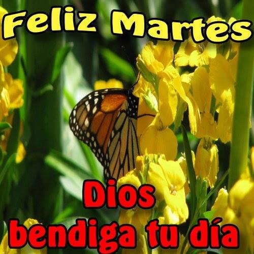 Feliz Martes, Dios bendiga tu día