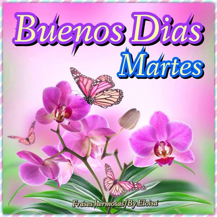 Buenos Días Martes