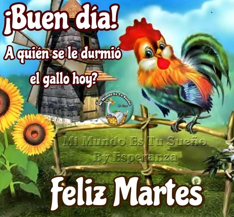 ¡Buen día! Feliz Martes