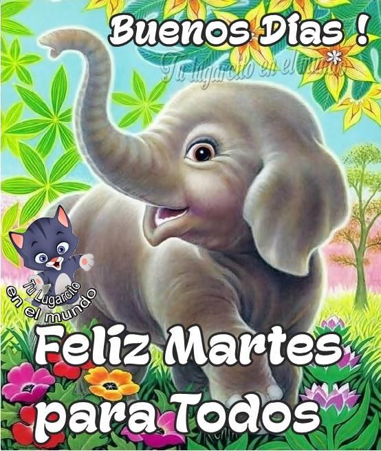 Buenos Días ! Feliz Martes para Todos