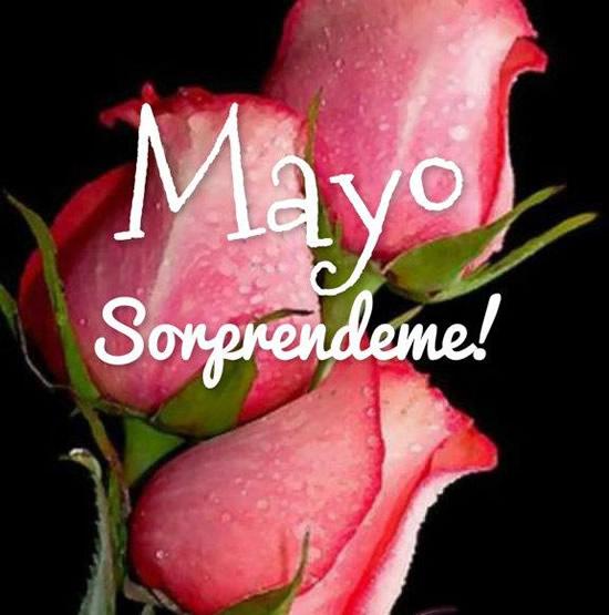 Mayo Sorprendeme!