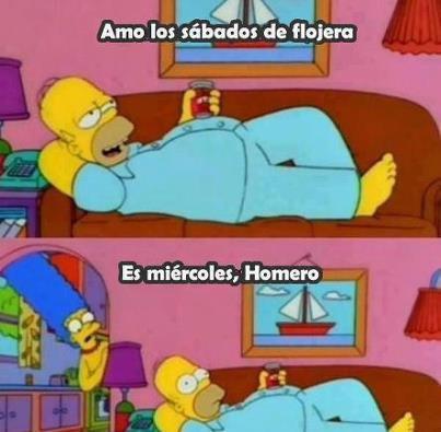 Amo los sábados de flojera... Es miércoles, Homero!