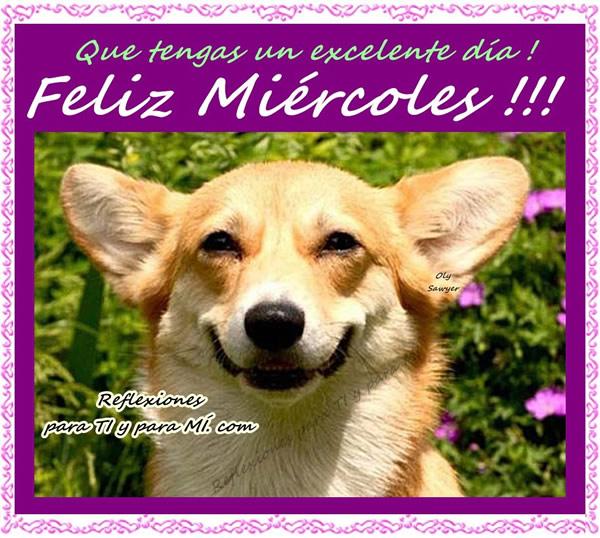 Que tengas un excelente día ! Feliz Miércoles !!!