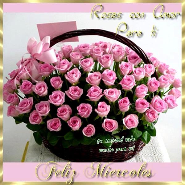 Rosas con amor para ti, Feliz Miércoles