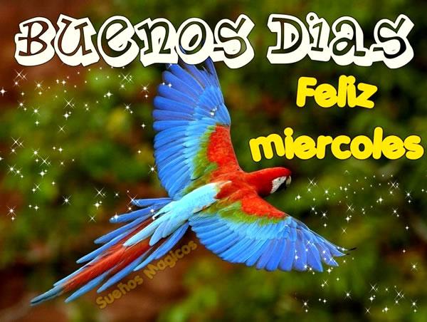 Buenos Días, Feliz Miércoles