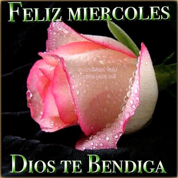 Feliz Miércoles, Dios Te Bendiga