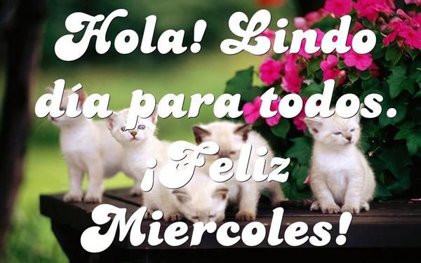 Hola! Lindo día para todos ¡Feliz Miércoles!