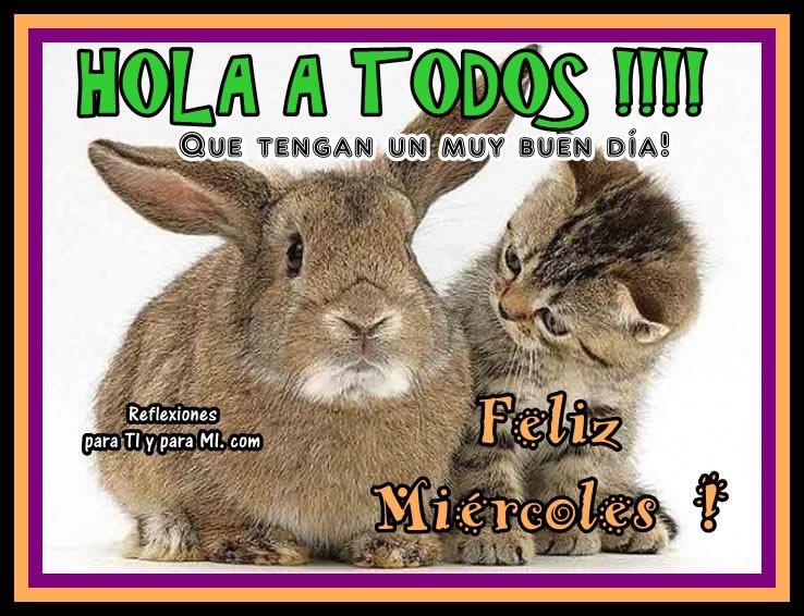Hola a todos!!! Que tengan un muy buen día! Feliz Miércoles!