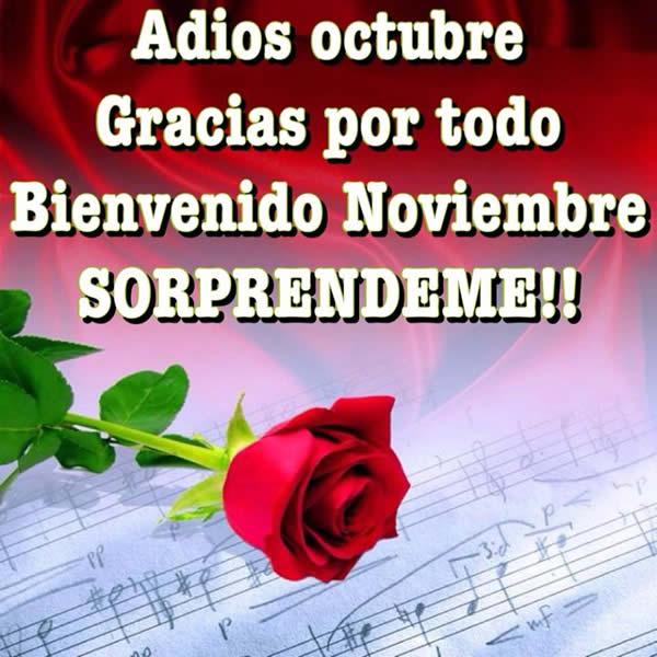 Adios Octubre, gracias por todo. Bienvenido Noviembre, sorprendeme!