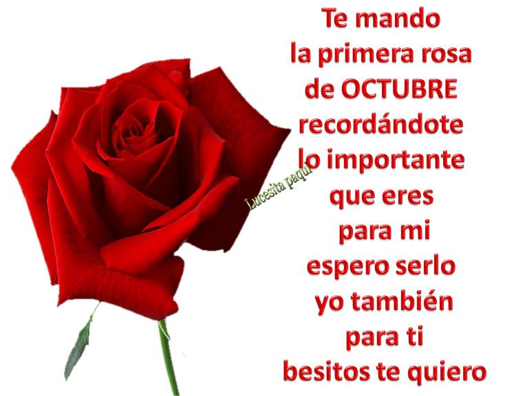 Te mando la primera rosa de Octubre...