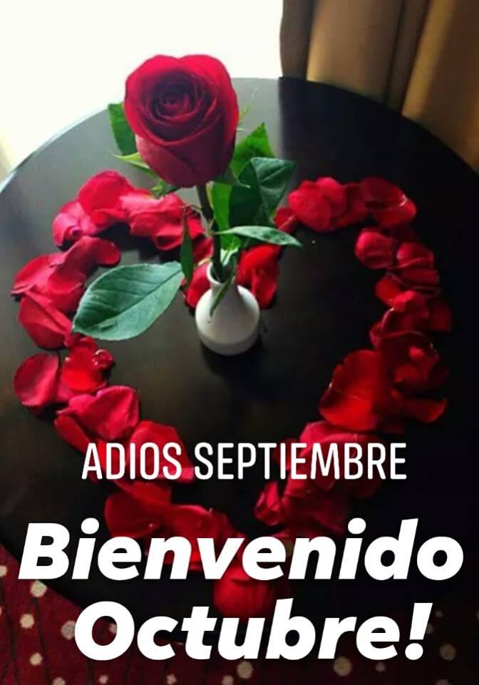 Adios Septiembre, Bienvenido Octubre!