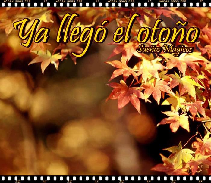 Ya llegó el otoño