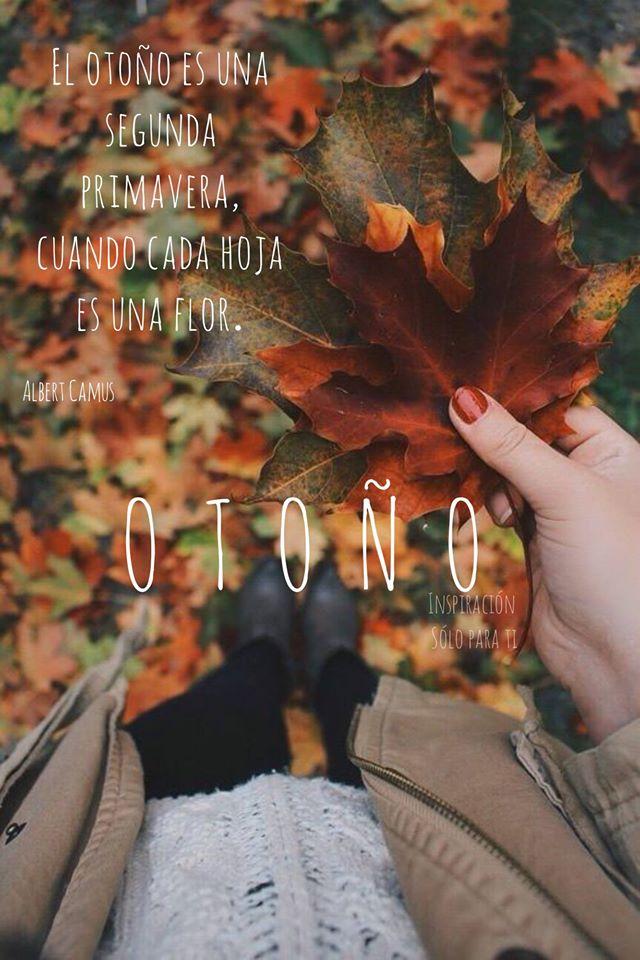 El otoño es una segunda primavera...