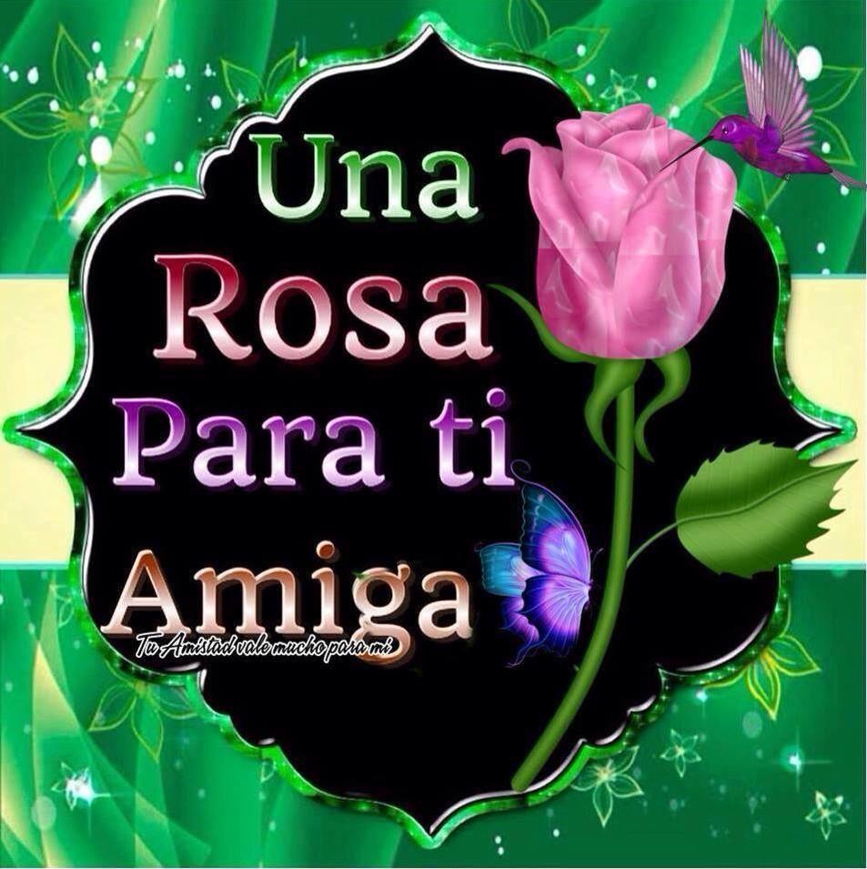 Una rosa para ti amiga