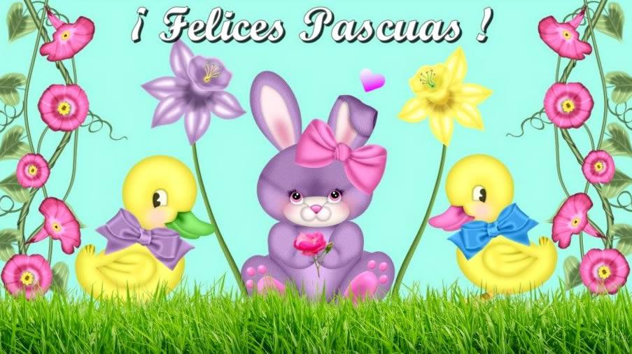 Pascua imagen 8