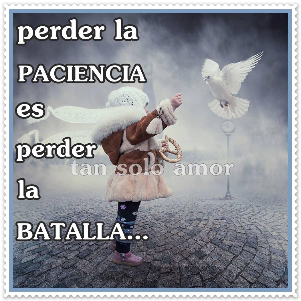 Perder la paciencia es perder la batalla...