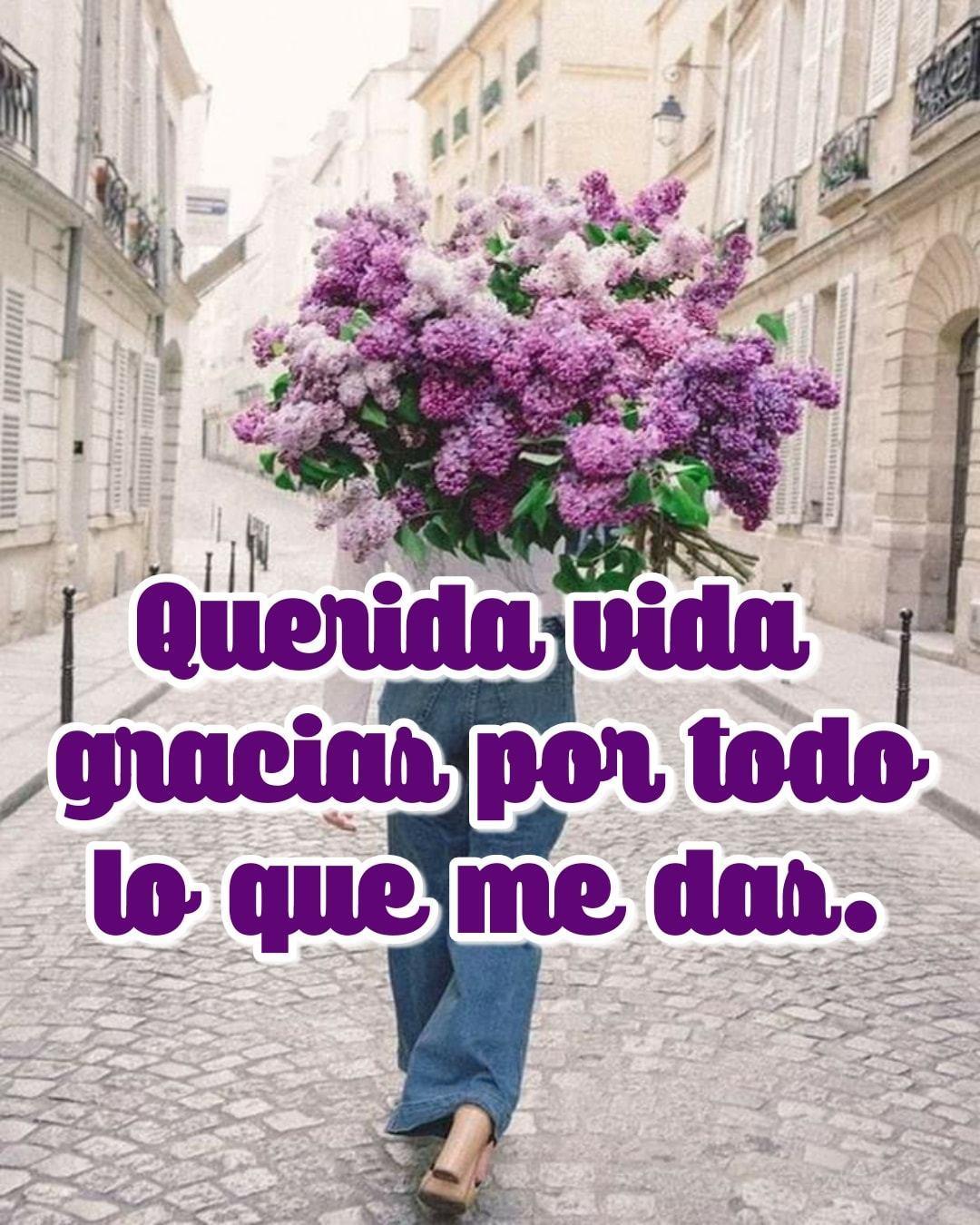 Querida vida gracias por todo lo que me...