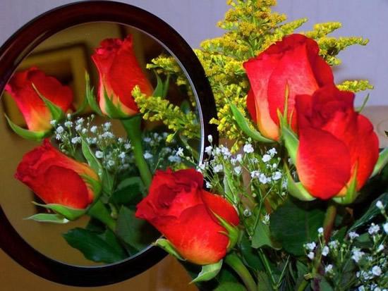 Reflejo de rosas en el espejo