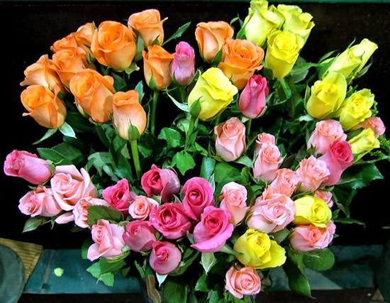Ramo de rosas multicolores