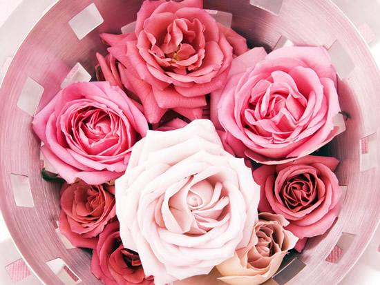 Rosas en una canasta