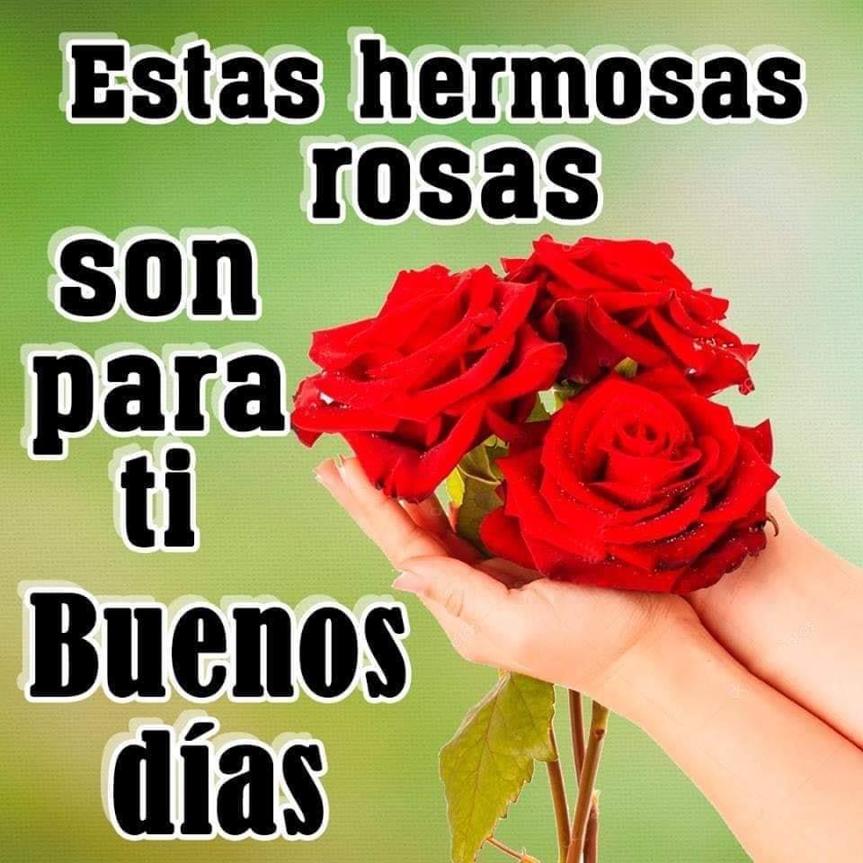 Estas hermosas rosas son para ti. Buenos...
