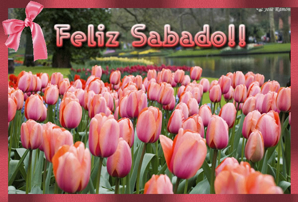 Feliz Sabado!!