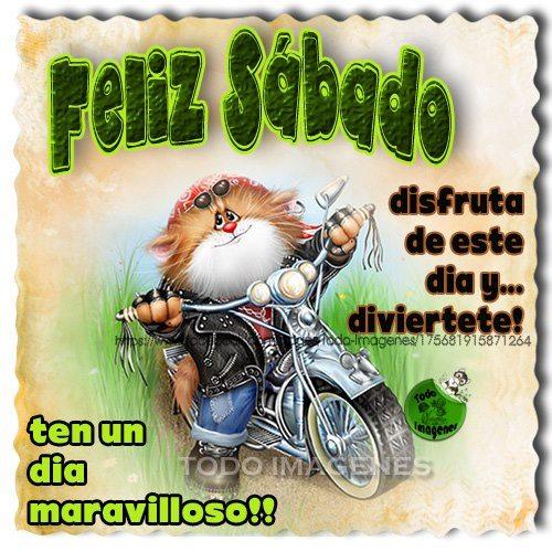 Feliz Sábado, Disfruta de este día y diviertete! Ten un día maravilloso!
