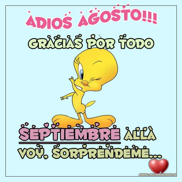 Adios Agosto, gracias por todo. Septiembre allá voy, sorprendeme...