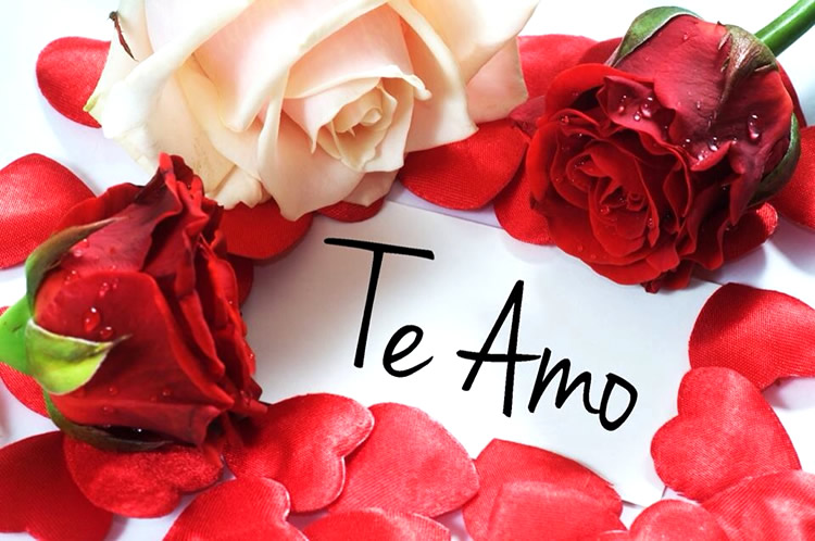 Te Amo imagen 2