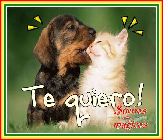 Te quiero!